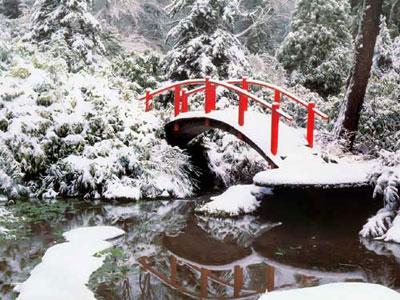 Фото → зимние обои на рабочий стол 1